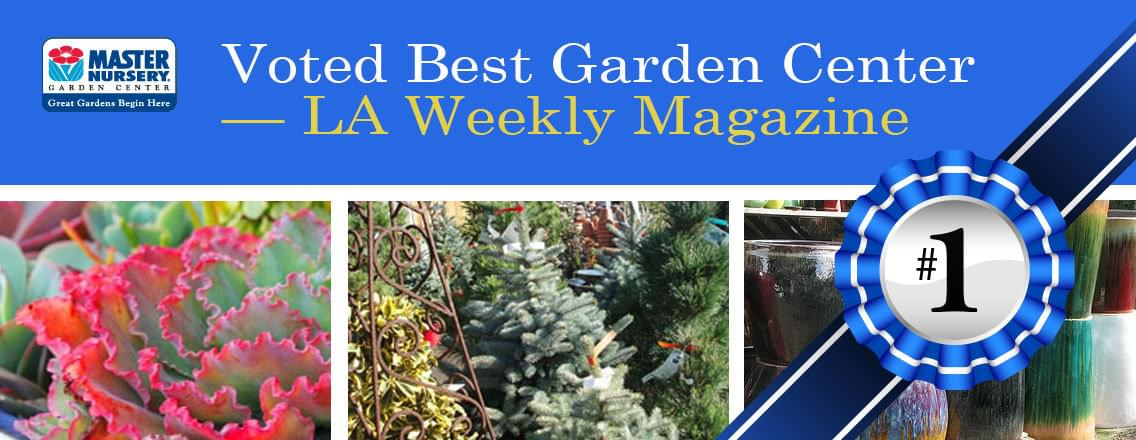 Marina Del Rey Garden Center