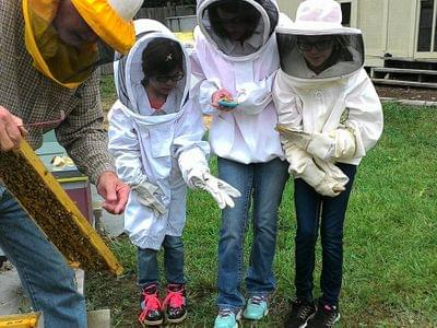Beekeeping%20with%20kids%20education